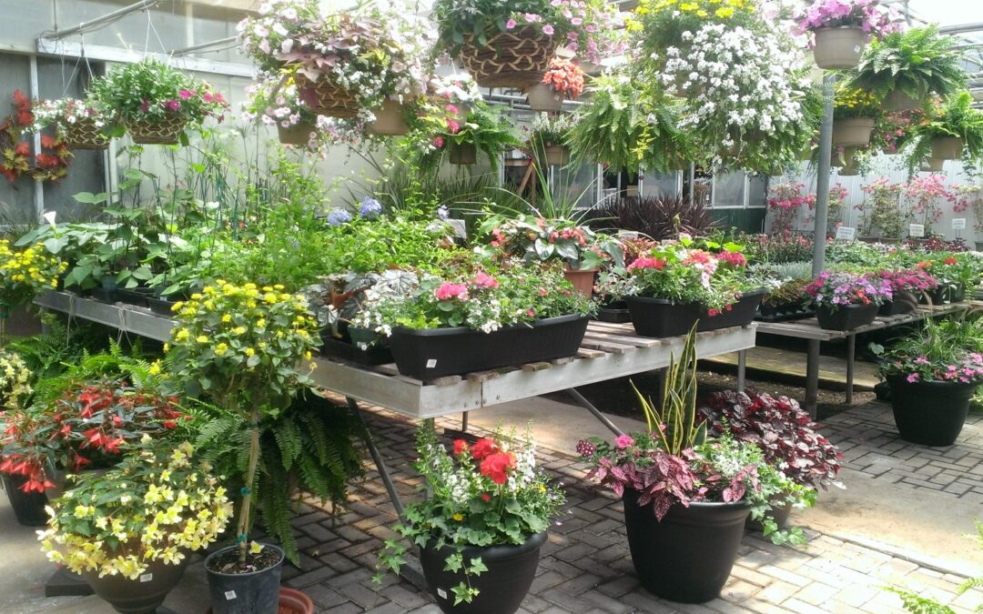 Custom Pre-Planted Planters